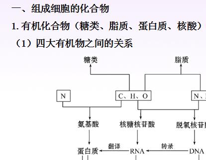 细胞的物质与结构基础1