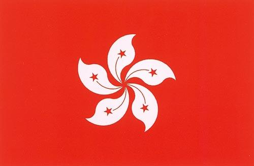 高中历史图片素材:香港特别行政区区旗